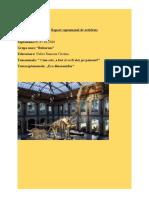 Raport de activitate  03-07.02.2020