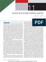 Trastornos de las funciones cerebrales superiores.pdf