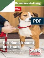 Themenflyer-Ein-Hund-kommt-ins-Haus