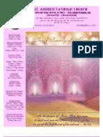 December 12, 2010 Bulletin