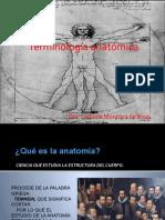 Terminología anatómica.pptx