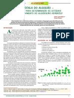 Escala do Algodão INPI.pdf