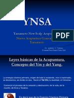 YNSA-1