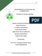 REPORTE liofilizacion.docx
