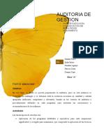 AUDITORIA-DE-GESTION-IMPRIMIR