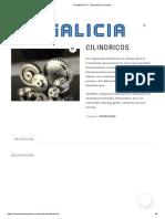 CATALOGO Engranajes GALICIA.pdf