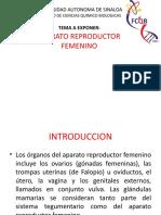 APARATO REPRODUCTOR FEMENINO sin datos