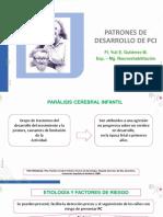 PATRONES DE DESARROLLO EN PCI