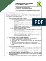 TERMINOS DE REFERENCIA CONTRATACION PUENTE TACOPAYA VERSION 2 AJUSTADA CON VICSTAR