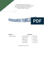 TRABAJO DERECHO DE FAMILIA. POTESTADES Y ORGANOS FAMILIAFRES