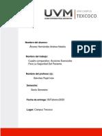 Acciones Esenciales Para La Seguridad Del Paciente.pdf