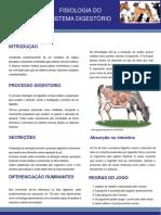 poster-90x120-convertido.pdf