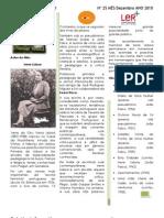 Boletim Informativo Dezembro 2010