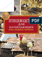 Птицеводство-для-начинающих