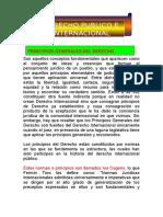 DERECHO PUBLICO - INTERNAL