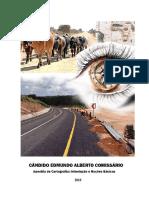 APOSTILA_DE_CARTOGRAFIA._CANDIDO_COMISSA.pdf