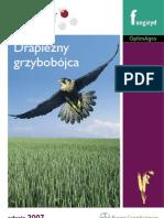 Falcon Broszura