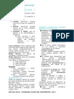 Examen morfología. (1)