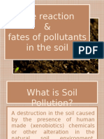 Reaction and Fate of Pollutants in the Soil