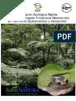 Evaluacion Ecologica En la Propuesta Área Protegida Trinacional Montecristo En Territorio Guatemalteco y Hondureño.pdf