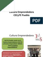 Datos Puebla TARJETA VF