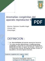 Anomalías-congénitas-del-aparato-reproductor-femenino