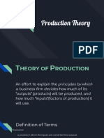Production Theory Report.pdf