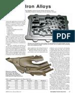 Iron alloys.pdf