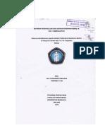 LP CKD (gagal ginjal)