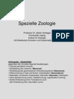 Spezielle Zoologie3