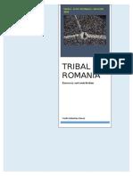 Tribal Romania. Emocracy and neotribalism.doc