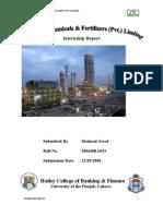 Internship FL