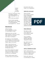 poeziidecraciunsianulnou