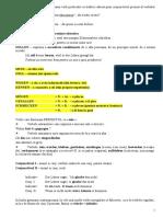 REGULI GRAMATIKA.doc