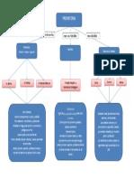 Mapa conceptual Ciencias Sociales, Religion Y catedra para la Paz - Profe Lina