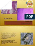 tejido-oseo.ppt
