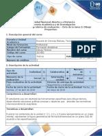 Guía de Actividades y Rúbrica de Evaluación - Ciclo de la tarea 2 Dibujo Proyectivo