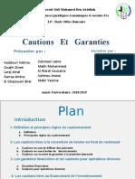 Cautions   Et   Garanties