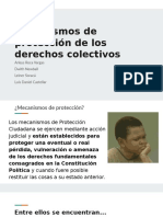 Mecanismos de protección de los derechos colectivos