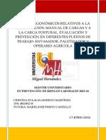 Cristina Eulalia  Moreno Martínez, TFM.pdfH.pdf