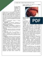 Viscuso, Matías Nicolás - Hernia Incisional Parte 2