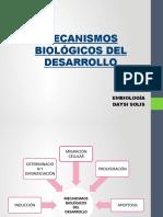 EMBRIOLOGIA DEBER 1 DS..docx