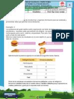 Guía 1 Estadística 6°