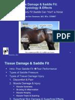 Tissue Damage & Saddle Fit