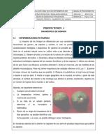 MP DF Principio Técnico 4 - Hongos[1]