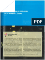 curtis cap 3 y 4.pdf
