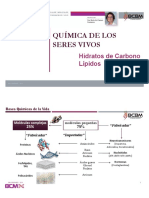 3 Teorico Las Bases químicas de la vida (hidratos y lipidos).pdf
