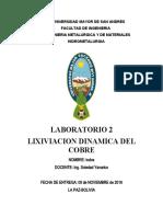 2. laboratorio de lixivicion dinamica.docx