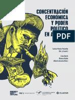 Concentracion-economica.pdf