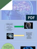neurociencias